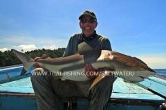 Popper Fiskeri Thailand - Black Tip Rev Haj Khao Lak