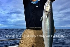 Rainbow Runner Fishing Similan Islands Thailand