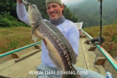 Giant Snakehead - Jungle Lake Fishing Thailand