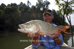 Jungle Lake Fishing Thailand - Hampala Barb Fly Fishing