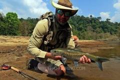 Blue Mahseer Fly Fishing Thailand
