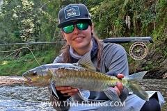 Blue Mahseer - Jungle Fly Fishing Thailand