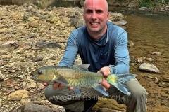 Fly Fishing Mahseer on Dry Fly