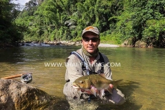 Mahseer Fly Fishing - Jungle Fly Fishing Thailand