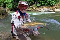 Mahseer Fly Fishing Thailand