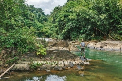 Jungle River Mahseer Fly Fishing  in Thailand