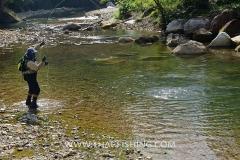 Jungle River Mahseer Fly Fishing Thailand