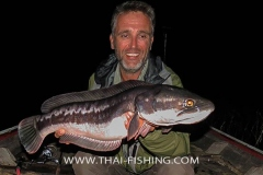 Giant-Snakehead-Fiskeri-Thailand-Jungle-Sø-Fiskeri-3