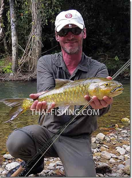 Fly fishing report Thailand