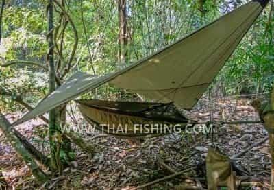 Jungle Camping - Thai Fishing