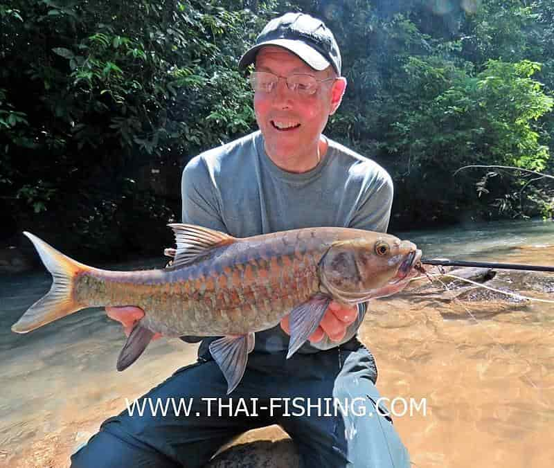 Mahseer Fly fishing Thailand - Fishing Report