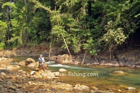 Thai Fishing Photo Gallery