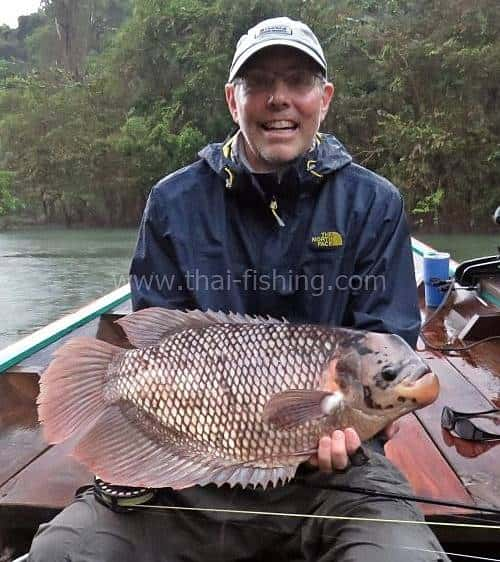 Big Giant Gourami on Fly Thailand - Fishing Report 9