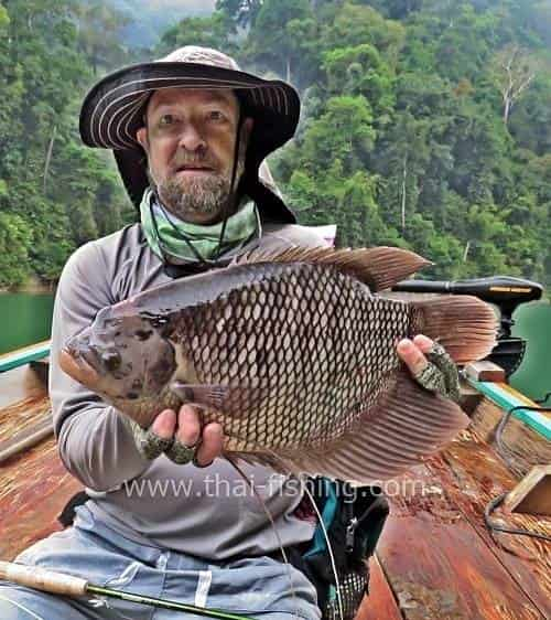 Giant Gourami Fly Fishing in the Lake Thailand - Fishing Report 9